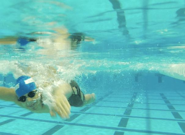 robert_justino_hammerheads_underwater