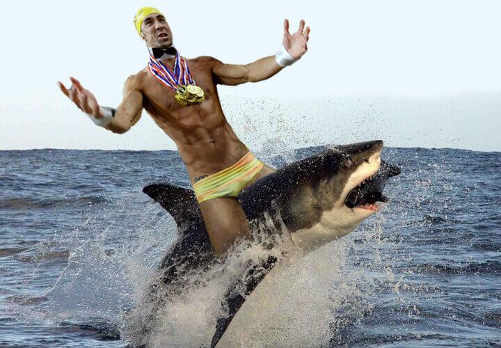 phelps-shark
