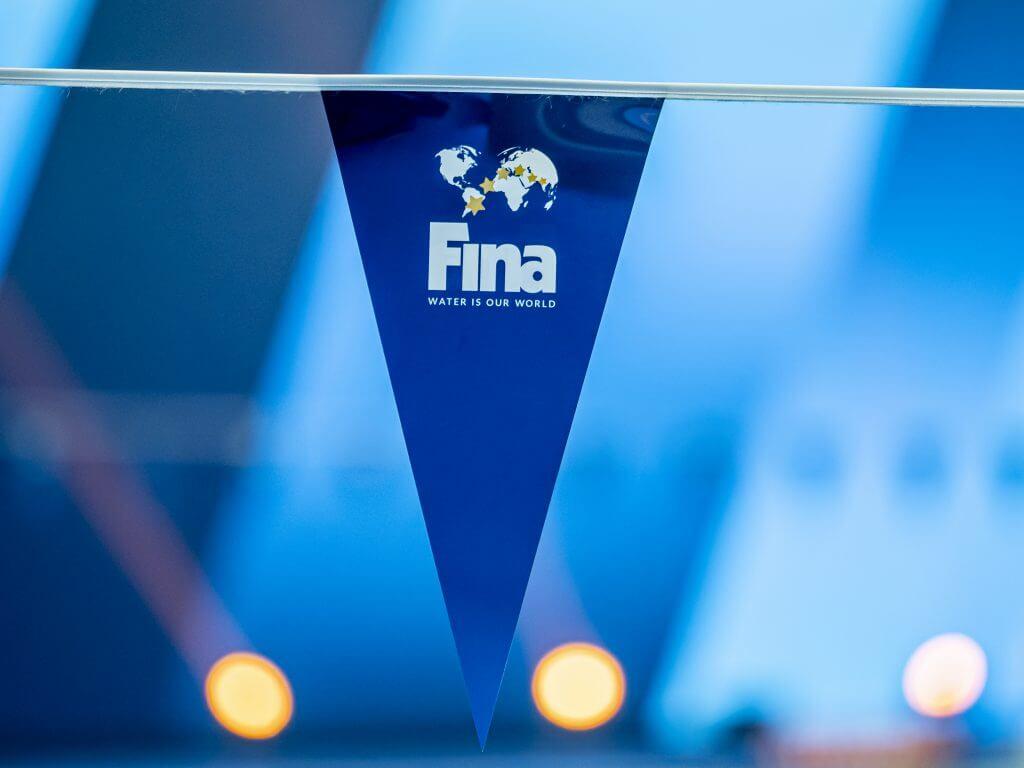 flags-fina